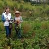 ESCUELA GALÁN TRABAJA POR LAS NUEVAS FAMILIAS GUARDABOSQUES DEL PAÍS